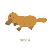 Platypus. Cartoon character