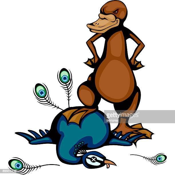 platypus vs peacock - duck billed platypus stock illustrations