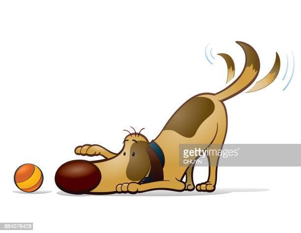 illustrations, cliparts, dessins animés et icônes de levrette ludique - chien humour