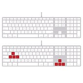 Playing computer keyboard with red button. vector image