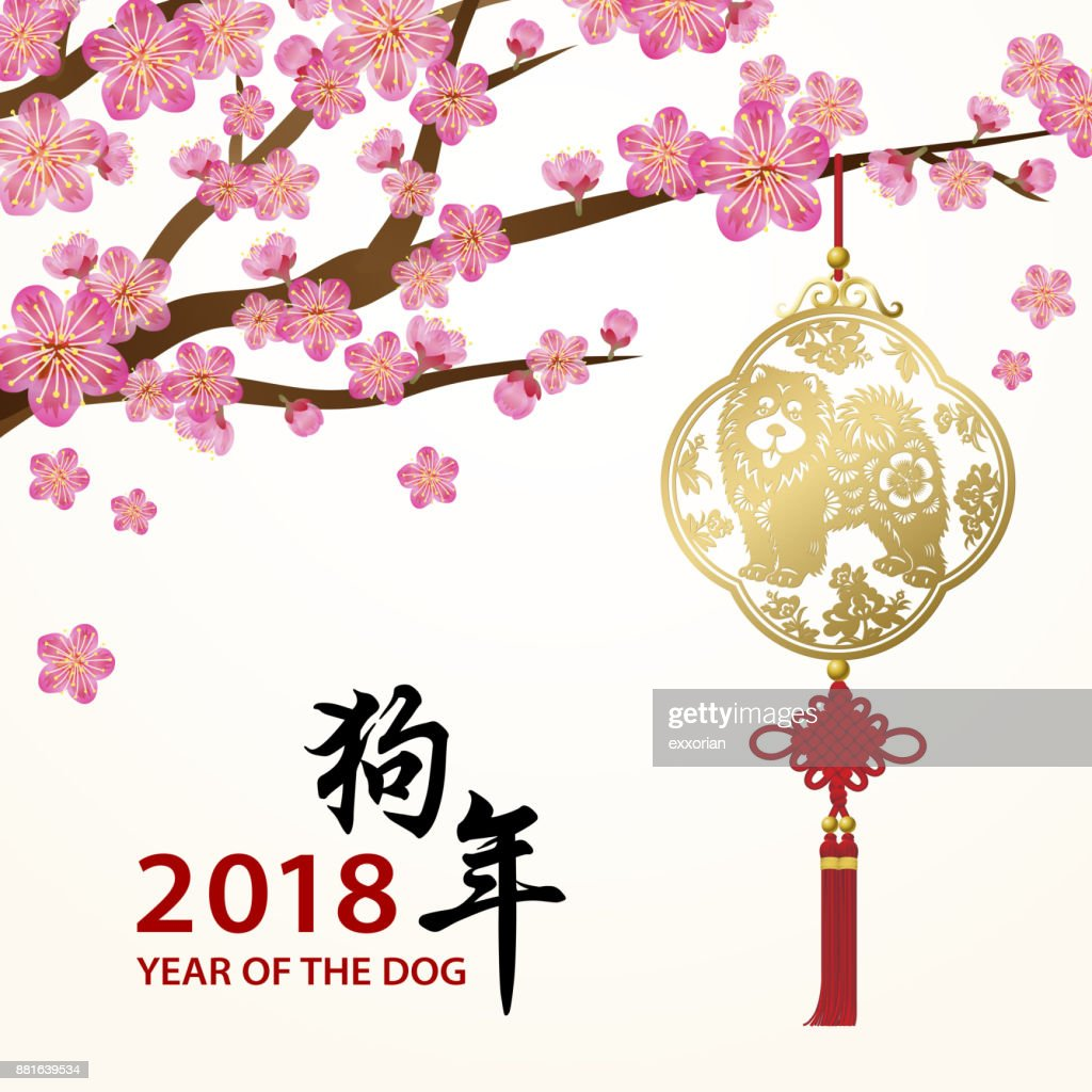 Plum Blossom for the Year of the Dog