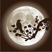 Plum Blossom, Full Moon and Nightingale Bird