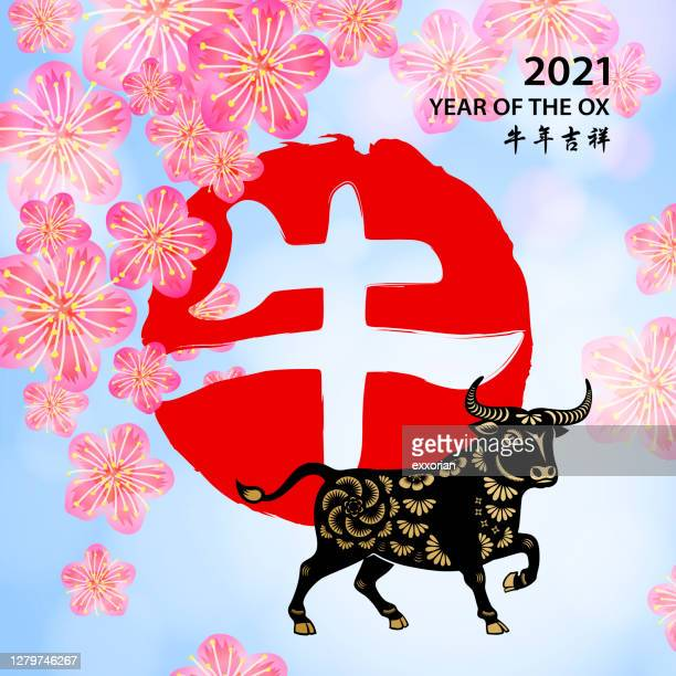 plum blossom of ox year - year of the ox stock illustrations