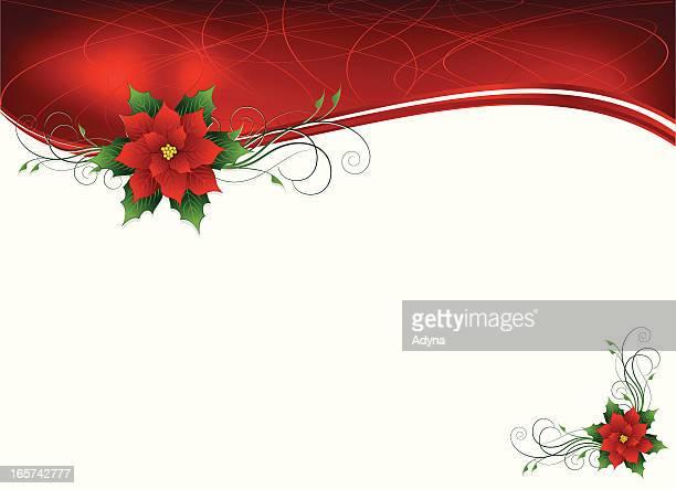 ilustraciones, imágenes clip art, dibujos animados e iconos de stock de fondo de flor de nochebuena - flor de pascua