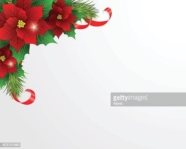 ilustraciones, imágenes clip art, dibujos animados e iconos de stock de flor de nochebuena  - flor de pascua