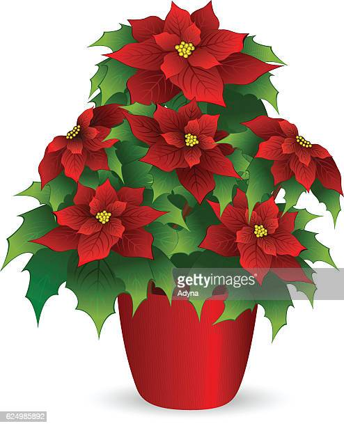 43c1301ef 60 Top Flower Pot Stock Illustrations, Clip art, Cartoons and Icons ...