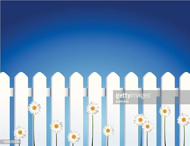 Pointed White Vinyl Fence and Daisies