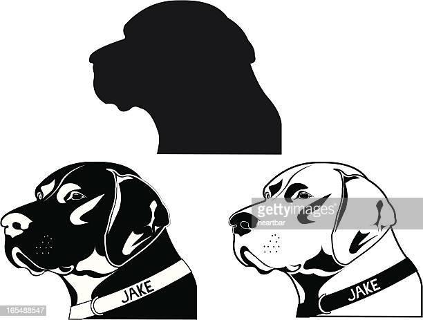 pointer dog - golden retriever stock illustrations, clip art, cartoons, & icons