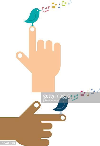 ilustrações de stock, clip art, desenhos animados e ícones de apontar para pássaro - canto de passarinho