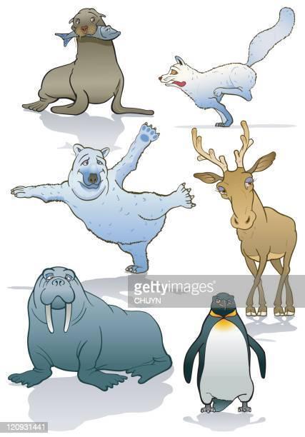 polar animals - mammal stock illustrations, clip art, cartoons, & icons