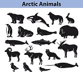 Polar arctic animals silhouettes collection