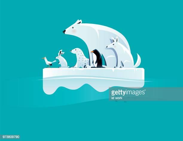 ilustraciones, imágenes clip art, dibujos animados e iconos de stock de oso polar y amigos en témpano de hielo - fauna silvestre
