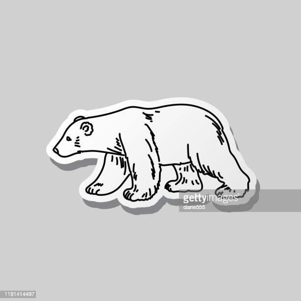 illustrations, cliparts, dessins animés et icônes de polar bear noir et blanc doodle canada icône - ours polaire