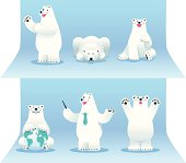 Polar bear collection