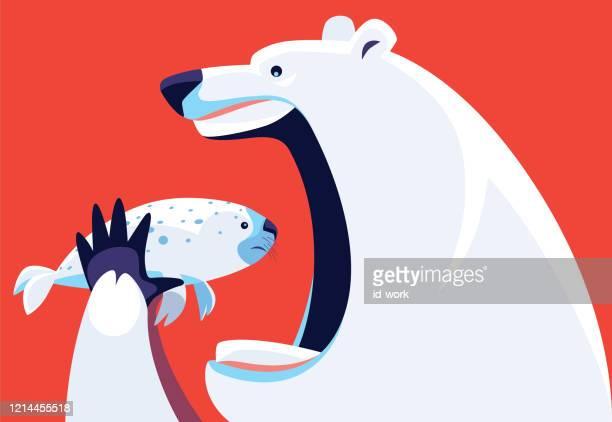 polar bear going to eat sea lion - two animals stock illustrations