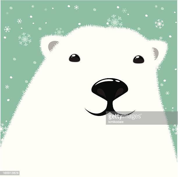 illustrations, cliparts, dessins animés et icônes de tête d'ours polaire - ours polaire