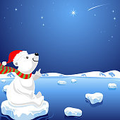 Polar Bear Looking to Star