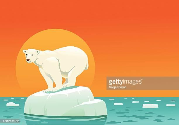 illustrations, cliparts, dessins animés et icônes de ours polaire sur la banquise flottante, le réchauffement avec espace texte - ours polaire