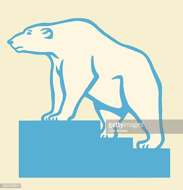 illustrations, cliparts, dessins animés et icônes de ours polaire sur l'escalier - ours polaire
