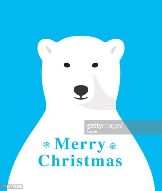 illustrations, cliparts, dessins animés et icônes de ours polaire souriant et célébrant noel - ours polaire