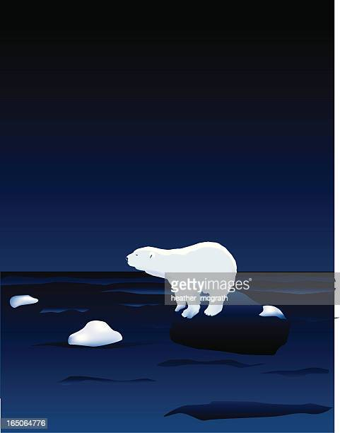 illustrations, cliparts, dessins animés et icônes de ours polaire - ours polaire