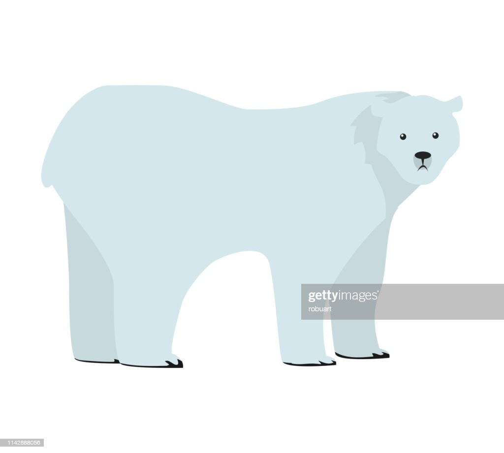Polar Bear Vector Illustration in Flat Design