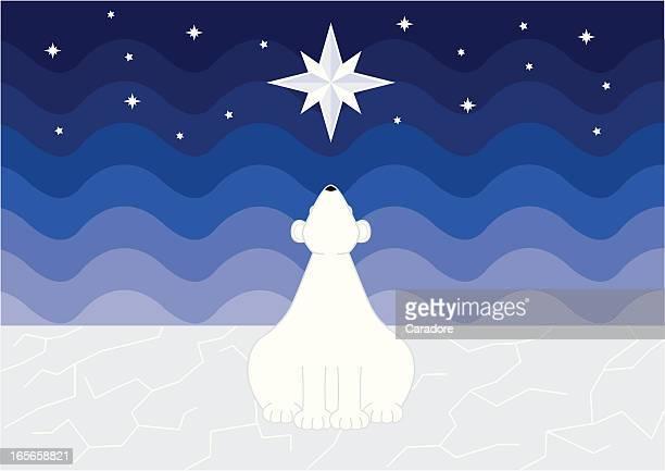 polar star - aurora borealis stock illustrations