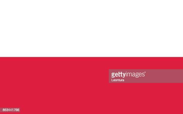 polnische flagge in den offiziellen farben - polnische flagge stock-grafiken, -clipart, -cartoons und -symbole