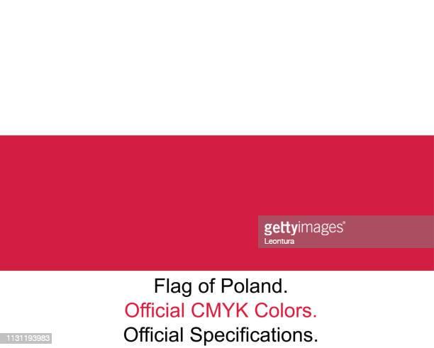 polnische flagge (offizielle cmyk-farben, offizielle spezifikationen) - polnische flagge stock-grafiken, -clipart, -cartoons und -symbole