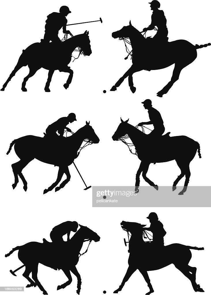 Polo Profiles