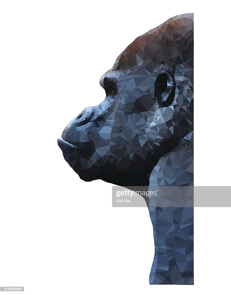 Polygon animal vector