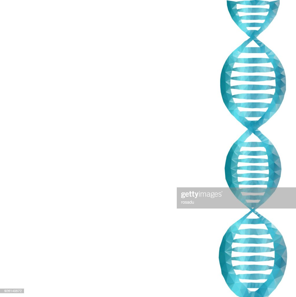 DNA polygon