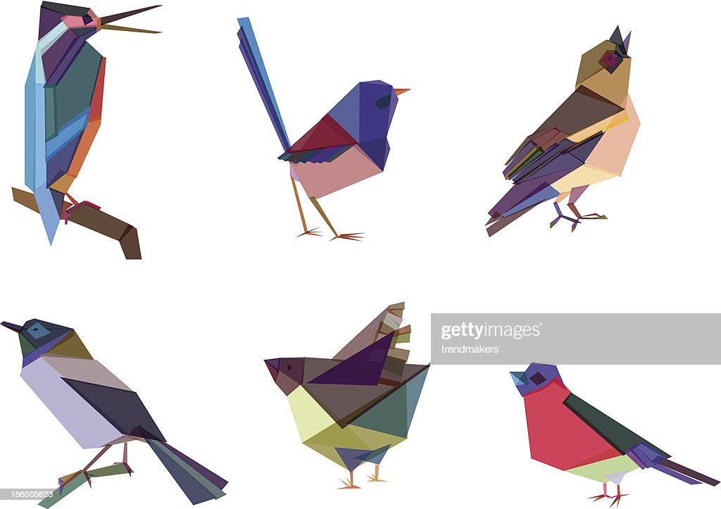 Polygonal Birds