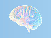 Polygonal brain illustration on blue BG