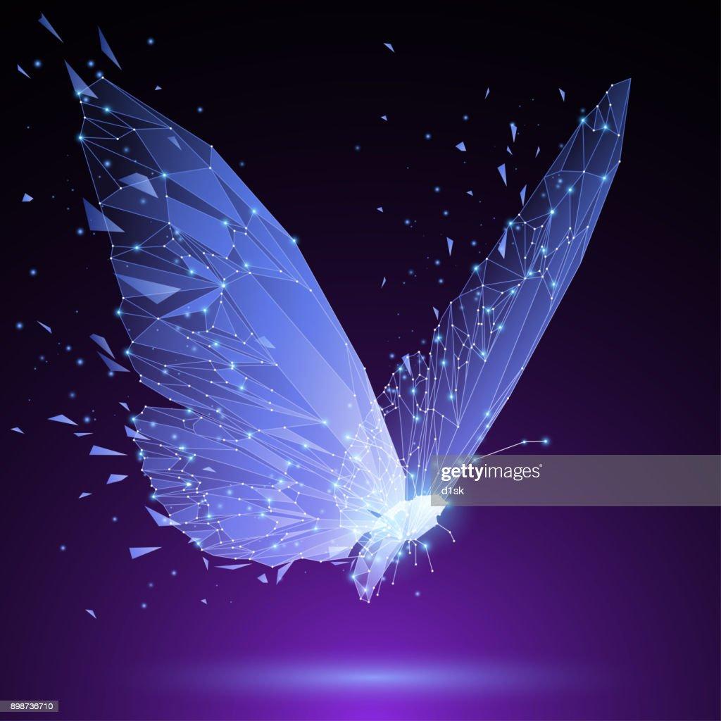 Polygonal butterfly illustration