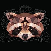 polygonal raccoon  head abstract isolated on a black backgrounds