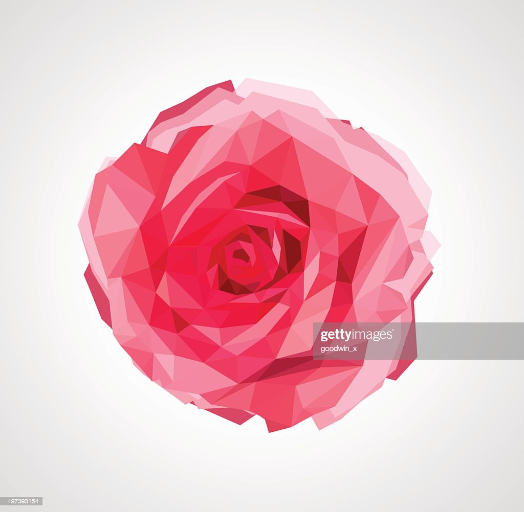 polygonal rose that bloomed