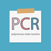 PCR Polymerase Chain Reaction written on a notebook paper