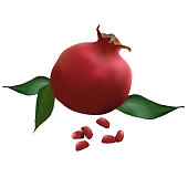 pomegranate realistic with leaves