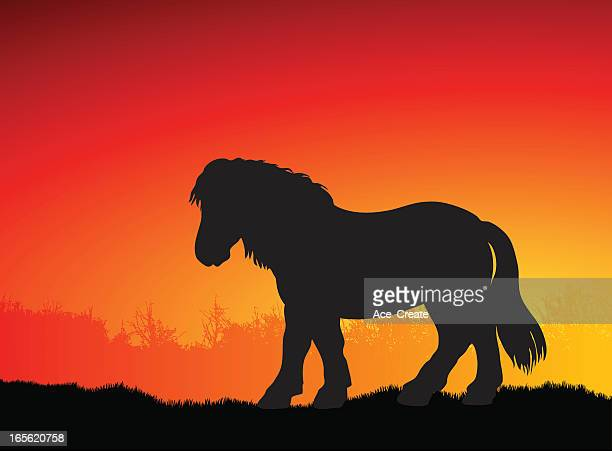 pony silhouette at sunset - pony stock illustrations, clip art, cartoons, & icons