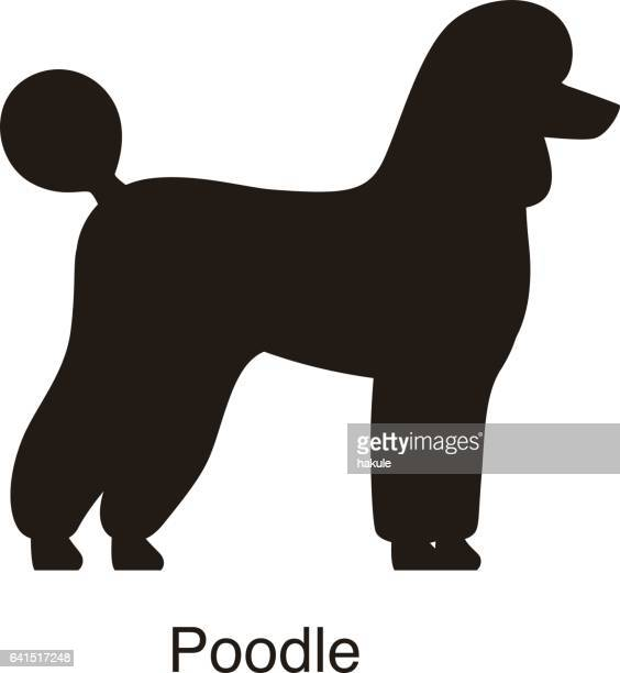 Poodle dog silhouette, side view, vector
