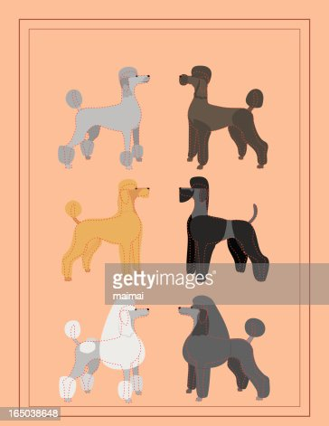 Poodles Professional Dog Grooming Chart High Res Vector
