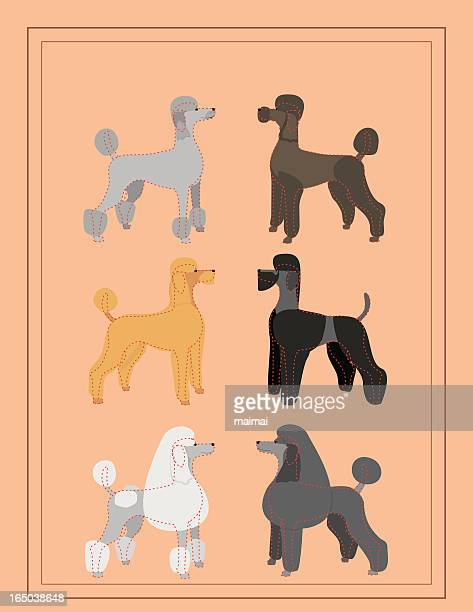 Poodles - Professional Dog Grooming Chart