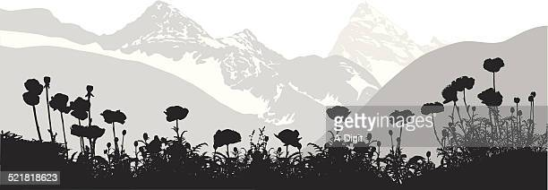 poppies - poppy stock illustrations, clip art, cartoons, & icons