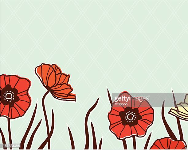 poppy edge - poppy stock illustrations, clip art, cartoons, & icons