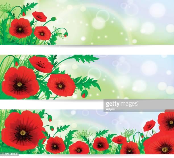 poppy fields - poppy plant stock illustrations, clip art, cartoons, & icons