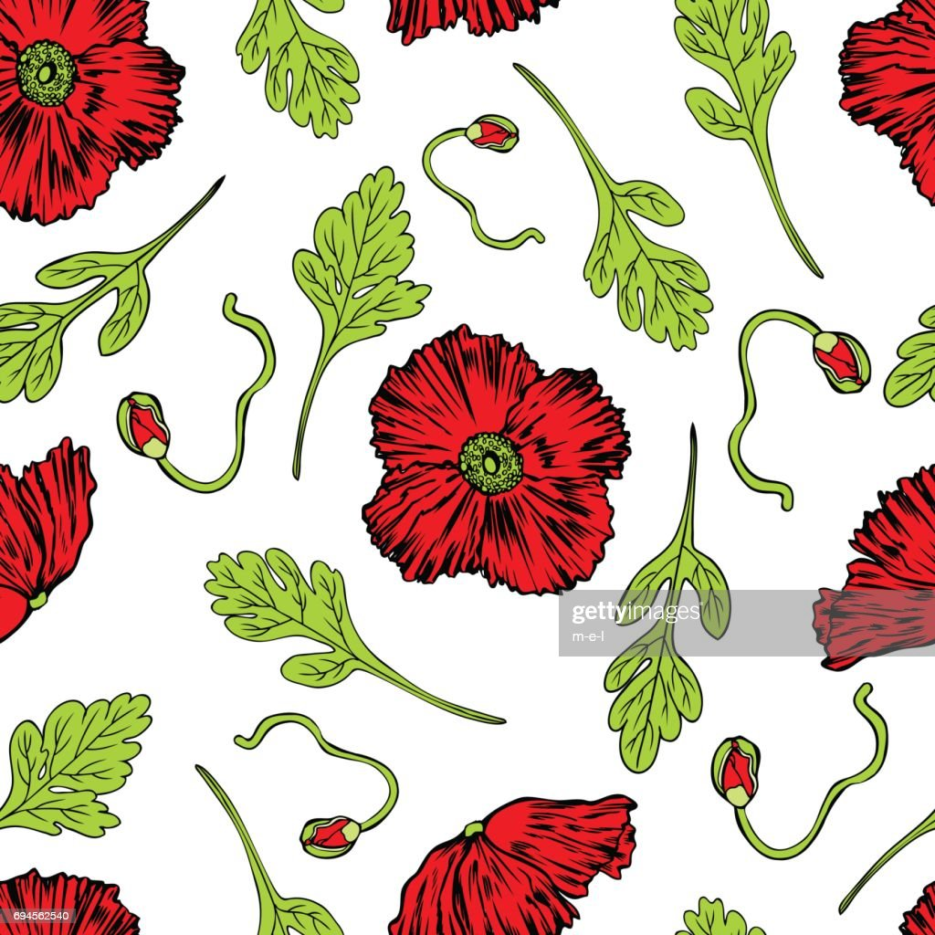 Poppy Flower Bud Leaf Vector Engraving Sketch Hand Drawn Isolated On