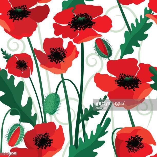 poppy seamless pattern - oriental poppy stock illustrations, clip art, cartoons, & icons