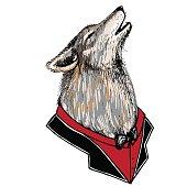 Portrait of a howling wolf in a tuxedo.