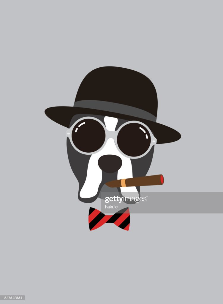 Portrait of boxer dog, wearing something, like a boss, cool style